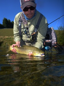 New Zealand Fly Fishing, brown trout