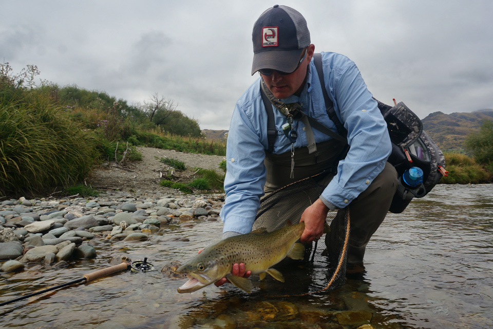 Prehistoric Brown Trout, New Zealand