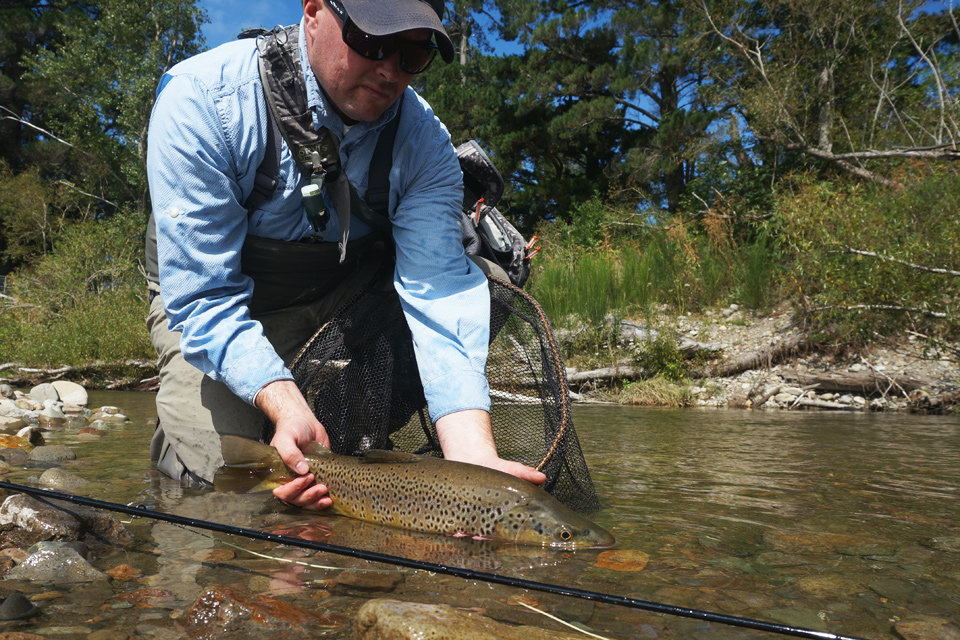 First Brown Trout in New Zealand