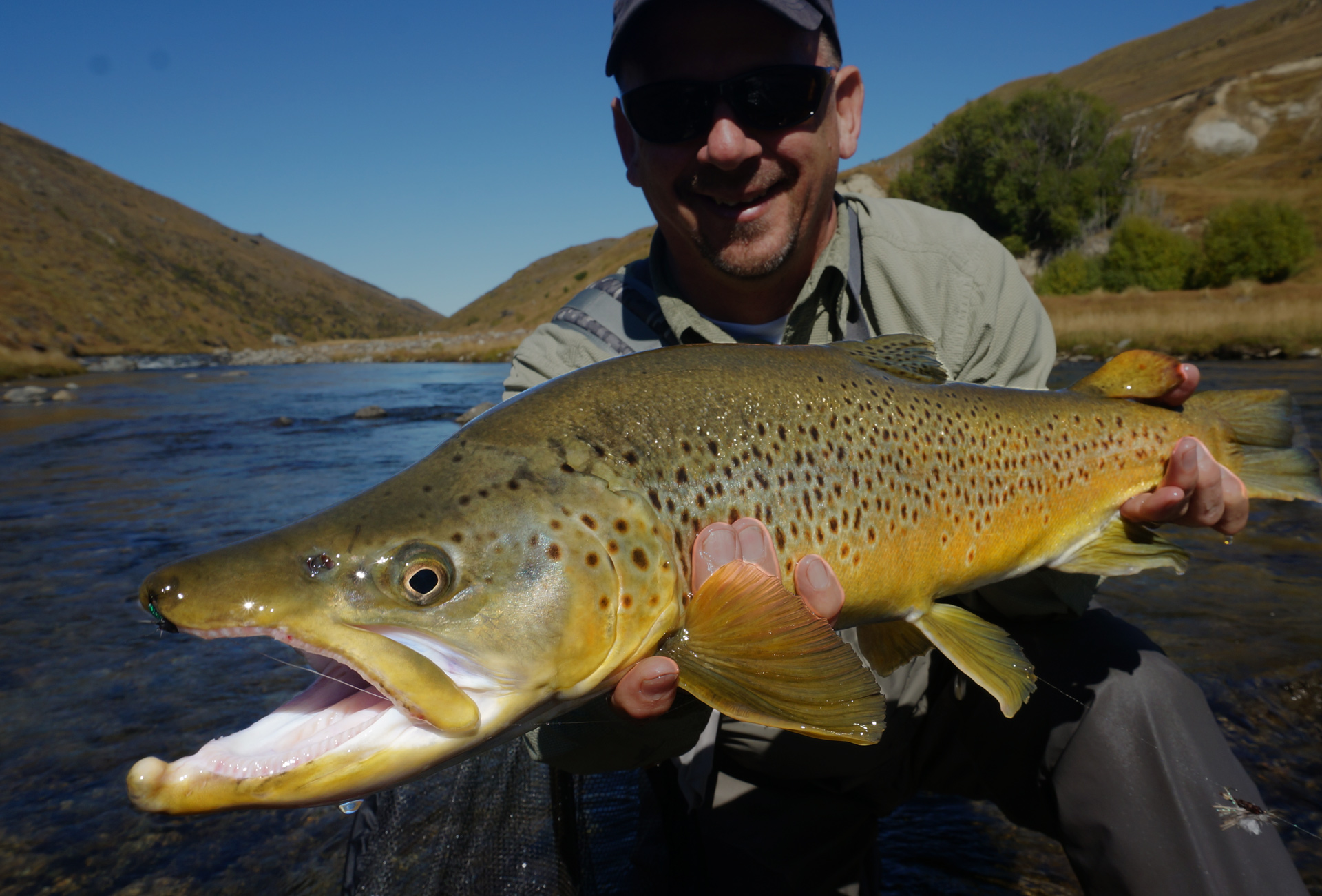 How to catch big brown trout fly fishing