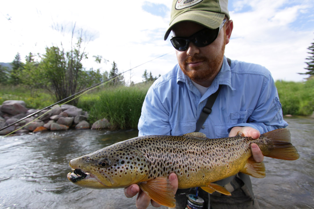 Beefy Utah Brown Trout